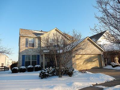 Single Family Home For Sale: 96 Regency Park Boulevard