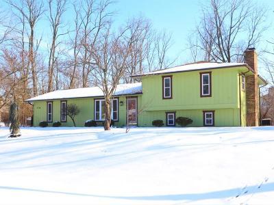 Single Family Home For Sale: 9706 Iris Drive
