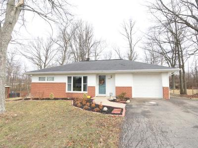 Single Family Home For Sale: 7594 North Pisgah Drive