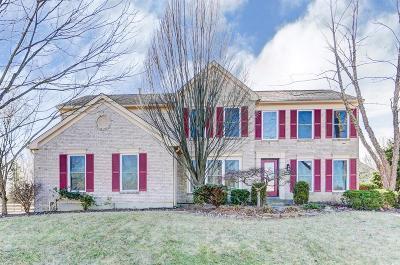 Single Family Home For Sale: 727 Dorgene Lane