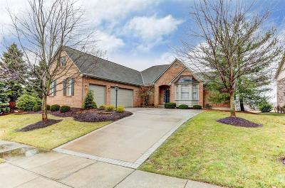 Single Family Home For Sale: 4987 Water Stone Lane