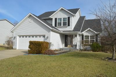 Single Family Home For Sale: 6228 Summerville Lane