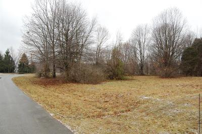 Adams County, Brown County, Clinton County, Highland County Residential Lots & Land For Sale: 1759 Stuttgart Drive