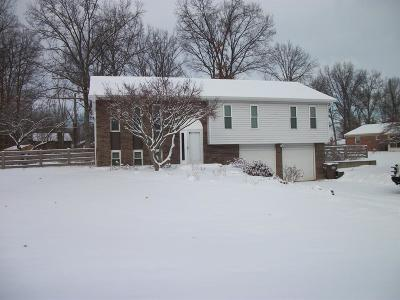 Single Family Home For Sale: 1555 Orchard Valley Drive