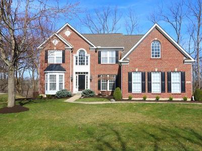 Mason Single Family Home For Sale: 4094 Stone Ridge Drive