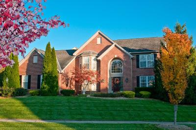 Single Family Home For Sale: 7675 Tylers Meadow Drive