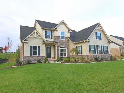 Crosby Twp Single Family Home For Sale: 6975 Chapel Lane