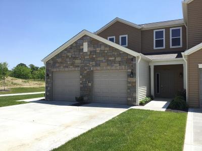 Crosby Twp, Harrison Twp, Miami Twp, Whitewater Twp, Morgan Twp, Ross Twp Condo/Townhouse For Sale: 7298 Villa Lane