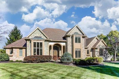 Single Family Home For Sale: 4769 Tillinghast Court