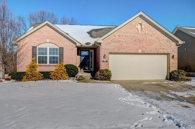 Single Family Home For Sale: 4238 Blue Springs Drive