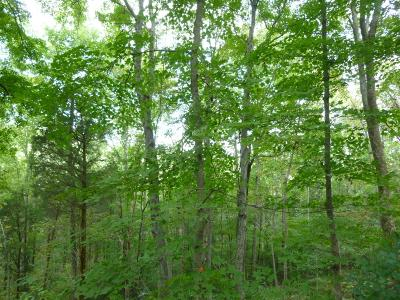 Monroe Twp OH Residential Lots & Land For Sale: $42,500
