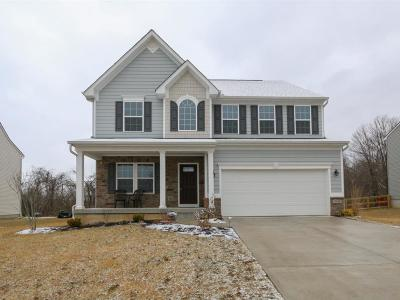 Crosby Twp Single Family Home For Sale: 7339 Vista View Circle