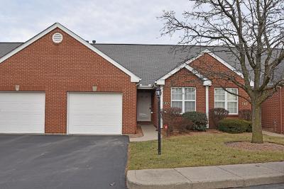 Cincinnati Condo/Townhouse For Sale: 1214 Parkside Court