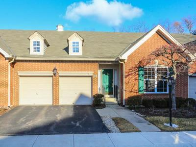 Blue Ash Condo/Townhouse For Sale: 4239 St Andrews Place