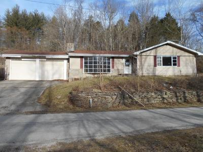 Adams County, Brown County, Clinton County, Highland County Single Family Home For Sale: 4608 Schwallie Road