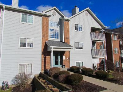 West Chester Condo/Townhouse For Sale: 7506 Shawnee Lane #266