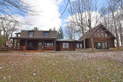 Adams County, Brown County, Clinton County, Highland County Single Family Home For Sale: 8248 St Rt 135
