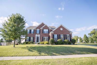 Turtle Creek Twp Single Family Home For Sale: 4250 Prairie Smoke Court