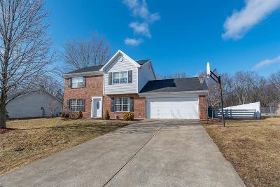 Georgetown Single Family Home For Sale: 105 Station Drive