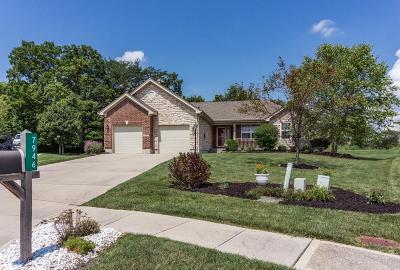 Liberty Twp Single Family Home For Sale: 7946 Peaceful Way