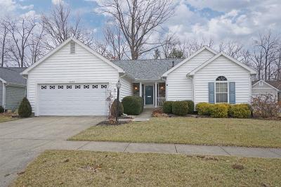 Hamilton Twp Single Family Home For Sale: 6936 Lighthouse Point