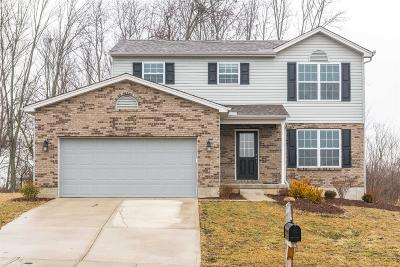 Liberty Twp Single Family Home For Sale: 8042 Victory Garden Lane