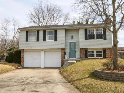 Mason Single Family Home For Sale: 800 Majken Place