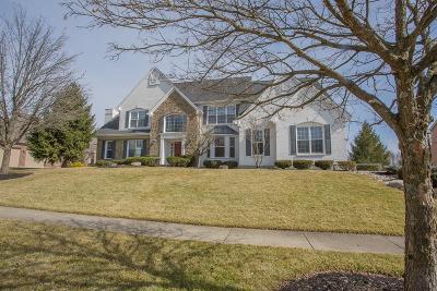 Hamilton Twp Single Family Home For Sale: 5202 Vista Point Drive