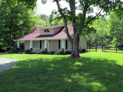Clermont County Single Family Home For Sale: 3345 St Rt 133