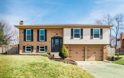 Mason Single Family Home For Sale: 6364 Butler Warren Road