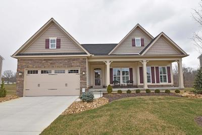 Clermont County Single Family Home For Sale: 5372 Hollybrook Lane