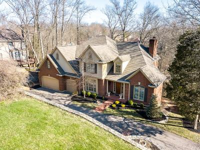 Montgomery Single Family Home For Sale: 8972 Nathaniels Hollow Drive
