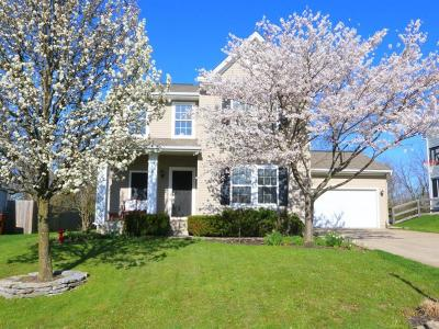 Lebanon Single Family Home For Sale: 464 North Church Drive