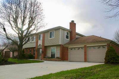 Adams County, Brown County, Clinton County, Highland County Single Family Home For Sale: 779 Hiatt Avenue