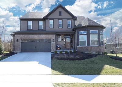 Hamilton Single Family Home For Sale: 5111 Emerald View Drive