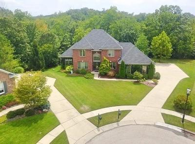 Colerain Twp Single Family Home For Sale: 4599 Philnoll Drive