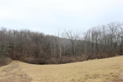Colerain Twp Residential Lots & Land For Sale: 1 Ac Stone Mill Road