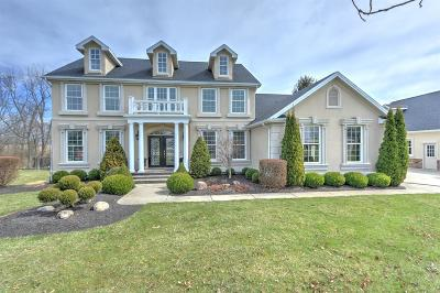 Adams County, Brown County, Clinton County, Highland County Single Family Home For Sale: 86 Deer Run Court
