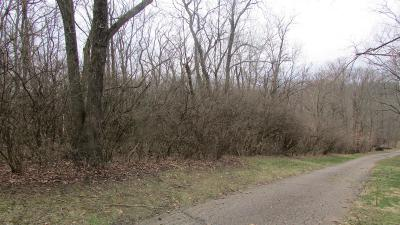 Colerain Twp Residential Lots & Land For Sale: 12 Brehm Road