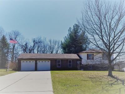 Lawrenceburg Single Family Home For Sale: 23364 Blue Ridge Drive