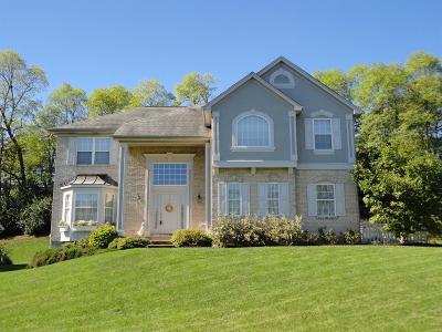 Green Twp Single Family Home For Sale: 5157 Castlebrook Court