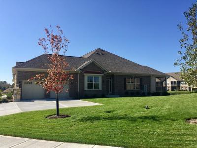 Mason Condo/Townhouse For Sale: 5791 Springview Circle