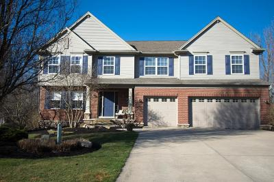 Clermont County Single Family Home For Sale: 21 Stonevalley Drive