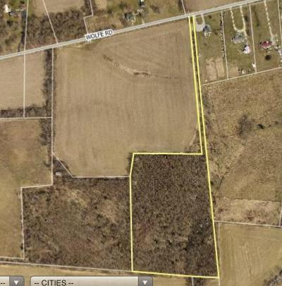 Adams County, Brown County, Clinton County, Highland County Residential Lots & Land For Sale: Wolfe Road