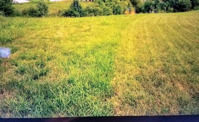 Hamilton Residential Lots & Land For Sale: 967 Golfview Drive