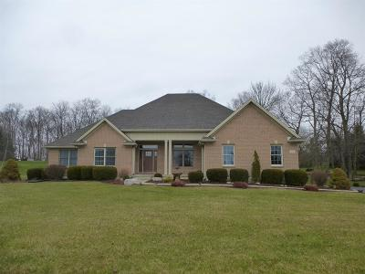 Adams County, Brown County, Clinton County, Highland County Single Family Home For Sale: 99 Todds Ridge Road