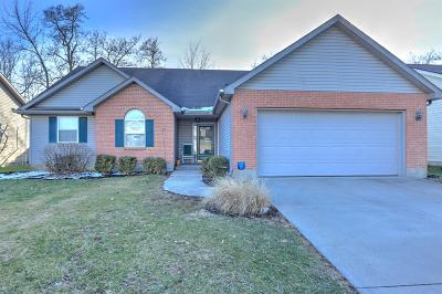 Adams County, Brown County, Clinton County, Highland County Single Family Home For Sale: 1674 Woodside Drive