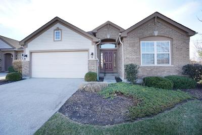 Turtle Creek Twp Single Family Home For Sale: 4855 Fox Run Place
