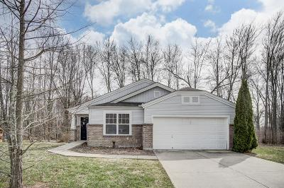 Clermont County Single Family Home For Sale: 57 Wooded Ridge Drive