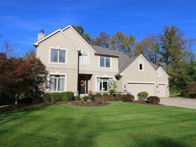 Hamilton County Single Family Home For Sale: 9717 Paul Farm Lane